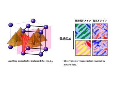 International collaborative research project for the development of environmentally friendly functional oxide materials