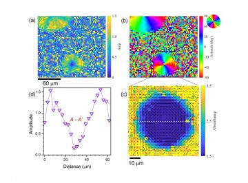 【Published】Infrared Polariscopy Imaging of Linear Polymeric Patterns with a Focal Plane Array