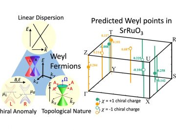 Existence of Weyl fermions in SrRuO3 ferromagnetic oxide : Theoretical predictions and Experimental evidences